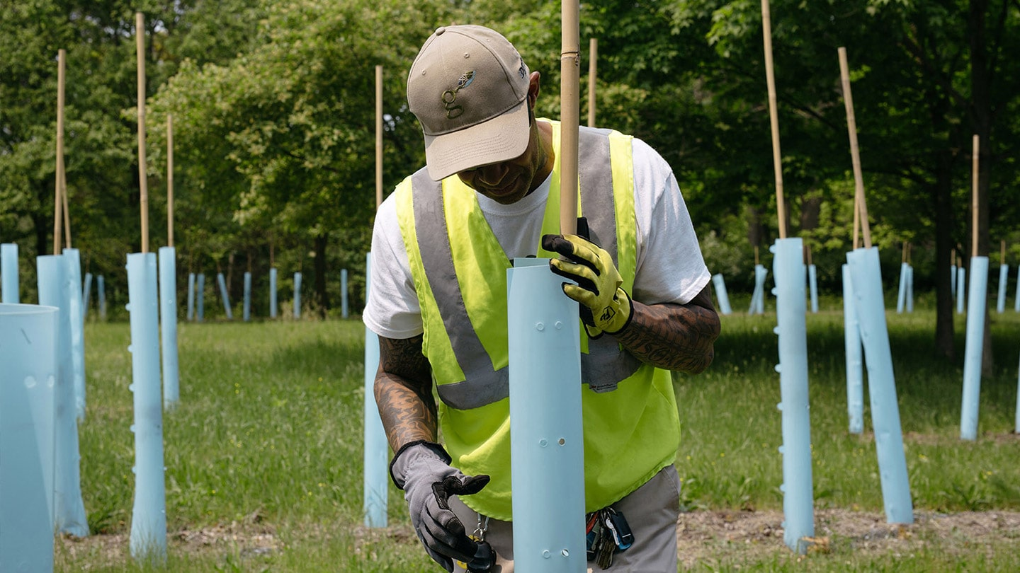 Crew Leader Mario Jamison, places tree guards on newly planted trees at The Greening of Detroit's nursery.